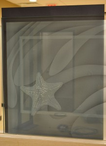 Sand Carved Starfish Glass