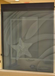 Sand Carved Starfish Glass