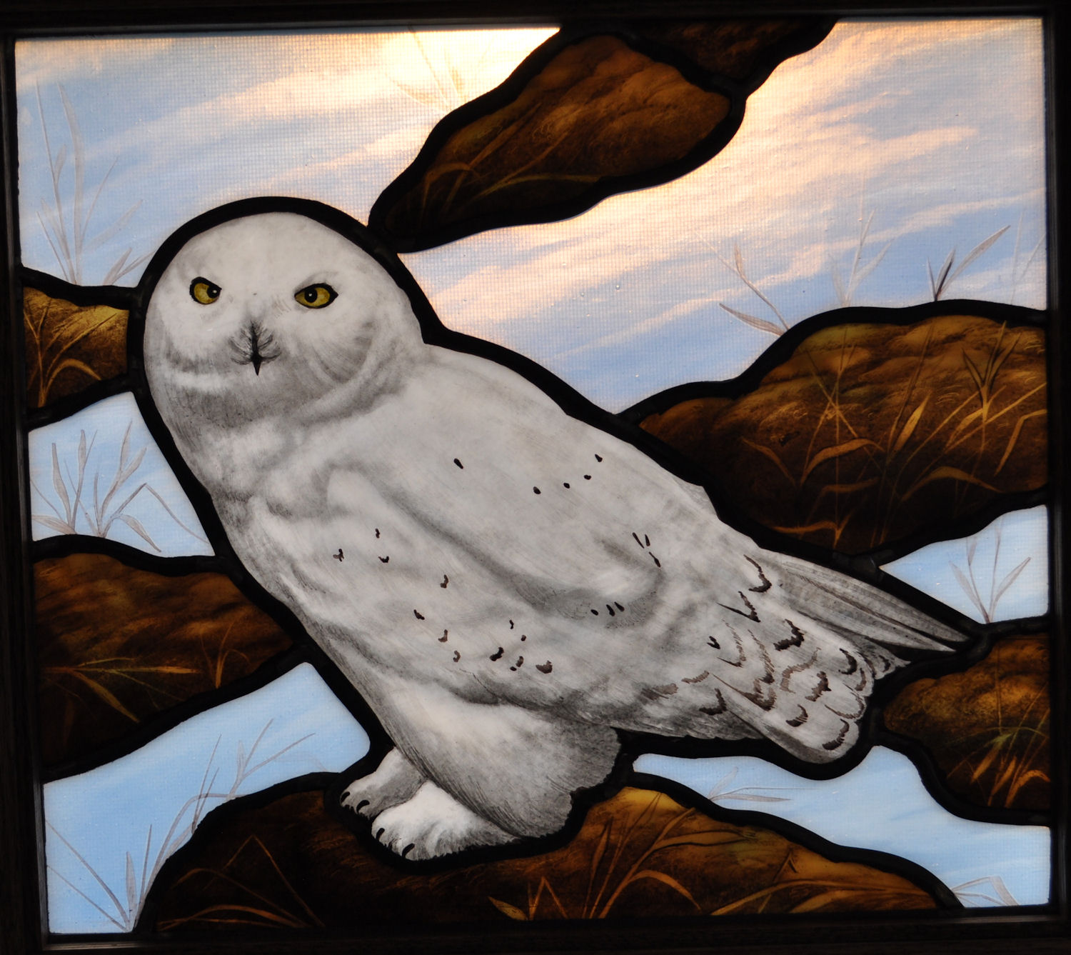 Stained Glass transom window featuring a Snow Owl